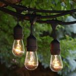 TENT LIGHTING, CAFE' BULBS, PER 48′ STRAND